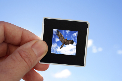 Soaring to create wealth for your future